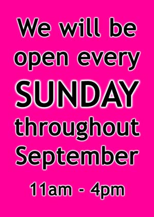 Dancers Boutique will be opening on Sundays from 11am - 4pm during September.