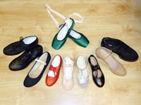 Ballet Shoes, Tap Shoes, Jazz Shoes, Pointe Shoes Fitted, Caberet Shoes, Character Shoes.